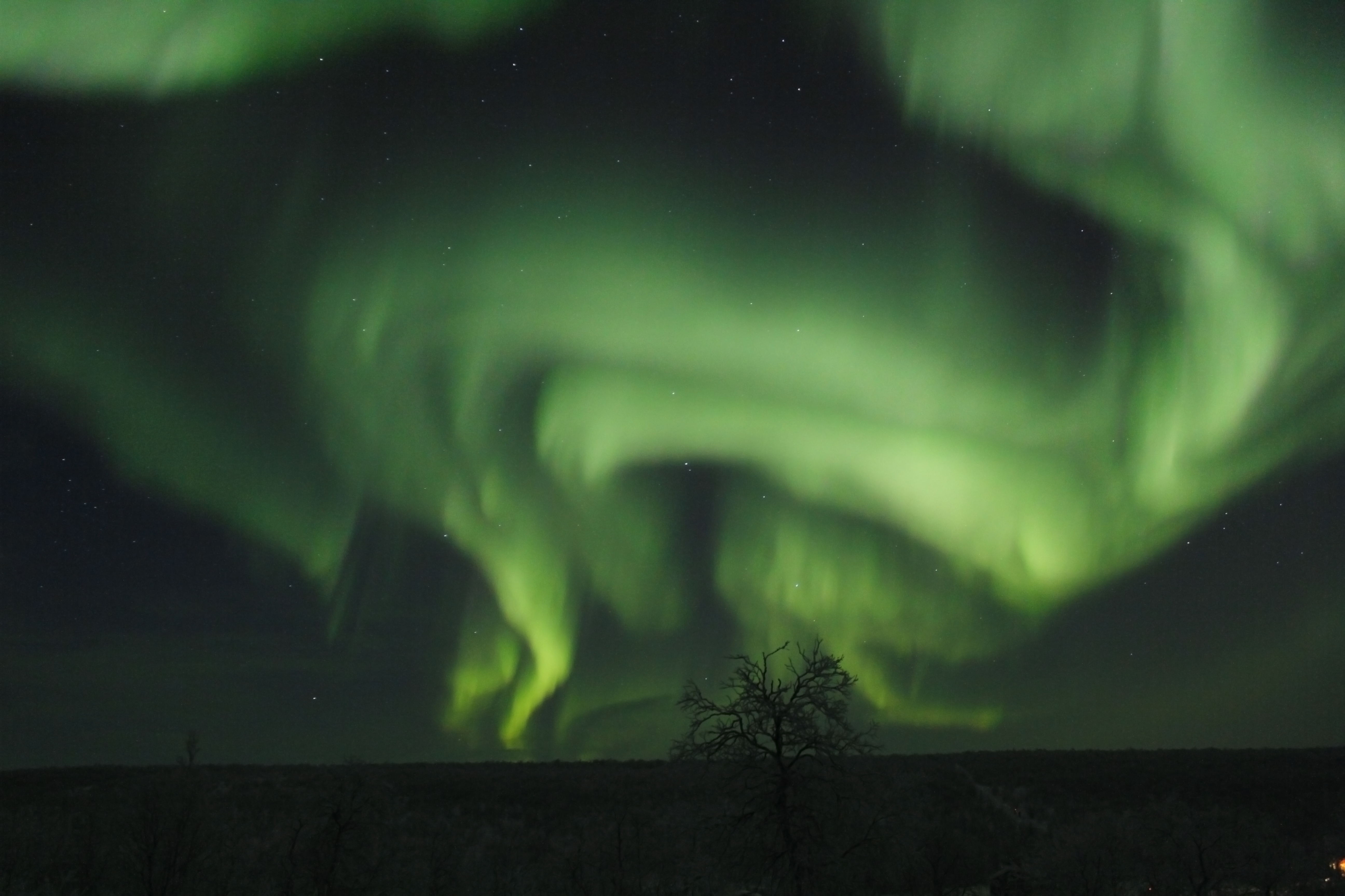 The Aurora often takes on a large swirling structure that spins and turns overhead.